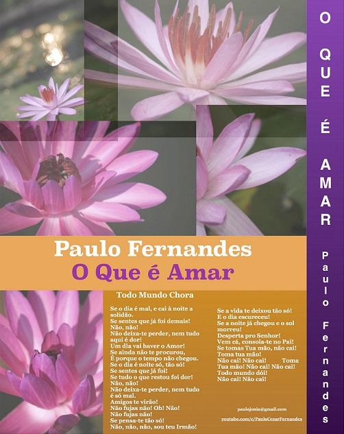 capa verso Paulo Fernandes